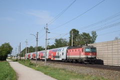 1144 080 mit S3 22674 in Theresienfeld (6041)